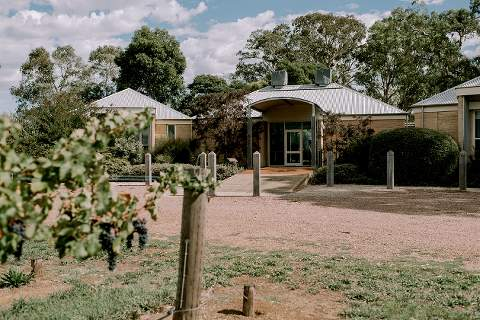 Yalumba Estate Coonawarra