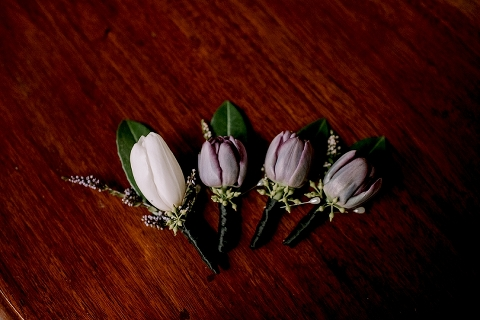 tulip buttonhole flowers